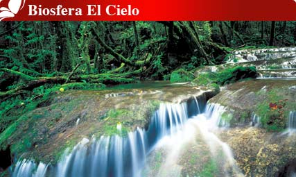 Biosfera El Cielo, Tamaulipas : Pueblos Magicos de Mexico